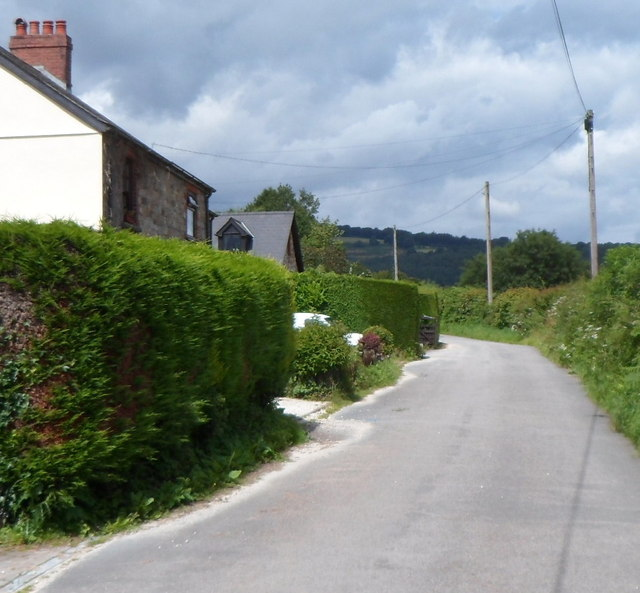 Roadside telephone poles, Croes y Pant