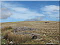 SN7920 : Rocks outcropping on slope of Waun Lefrith by Trevor Littlewood