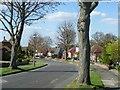 TQ4265 : Kemble Drive, Locksbottom by Marathon