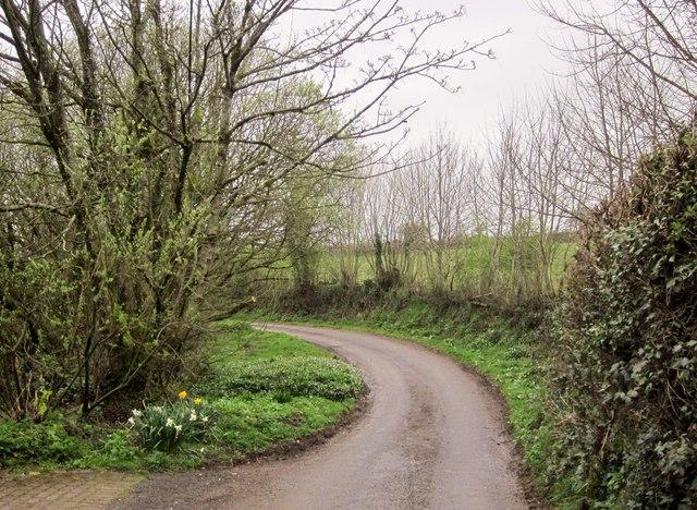 Hansetown Road