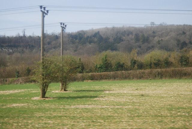Two telegraph poles