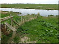 TL4684 : Fence on the bank of The Ouse Washes by Richard Humphrey