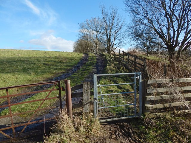 Start of a path to Duntocher