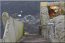 HU4039 : Steps at Scalloway by Stephen McKay