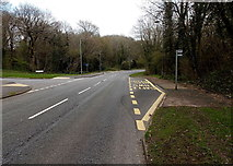 ST2896 : Bus stop in woodland, Cwmbran by Jaggery