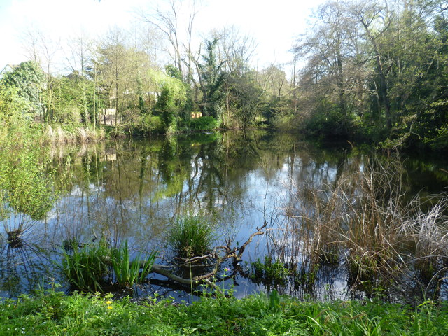 The lake in Hollydale Recreation Ground