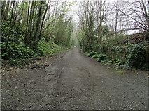 SH5371 : Isle of Anglesey Coastal Path at Llanfair PG by Chris Heaton
