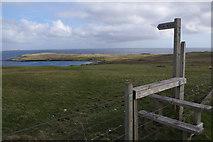 HP6301 : Path to Ham Beach by Stephen McKay