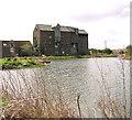 TG3129 : Ebridge Mill seen across the restored mill pond by Evelyn Simak