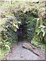 SX4983 : Disused mine adit in Lydford Gorge by David Smith