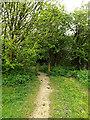 TQ0994 : Entrance to Ebury Way by Geographer