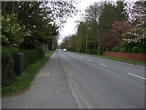 TA2904 : Humberston Avenue (B1219) by JThomas