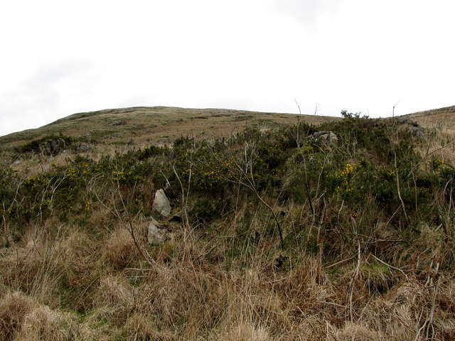 View north along the western slopes of Camlough Mountain