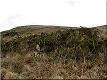 J0424 : View north along the western slopes of Camlough Mountain by Eric Jones
