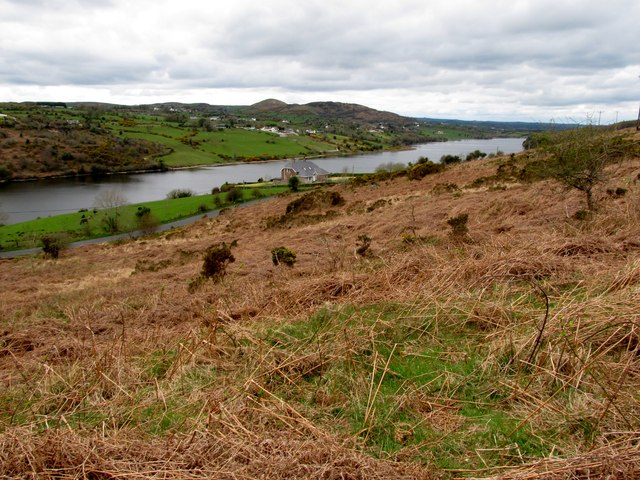 Last year's bracken on the lower slopes of Camlough Mountain