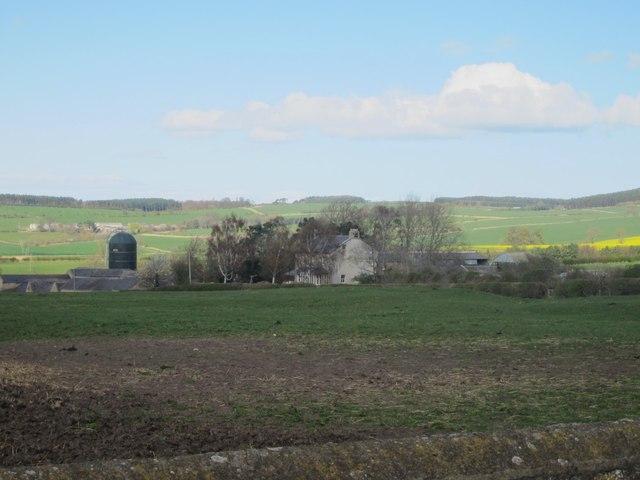 Grass field at Kimmerston