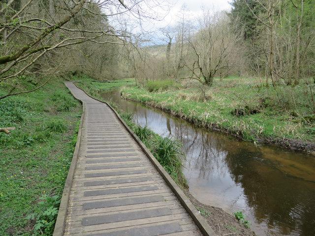 River Derwent, Forge Valley