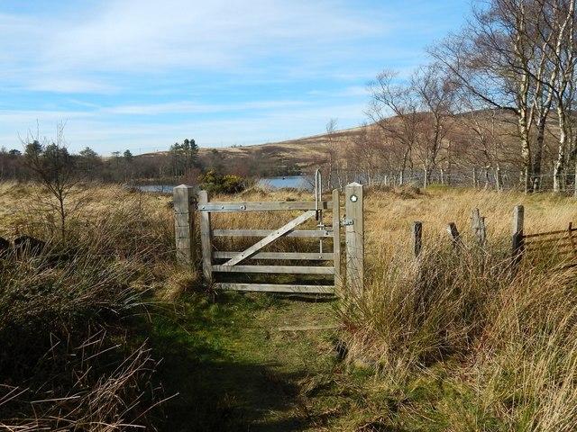 Gate on path