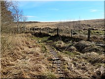 NS3778 : Boardwalk near Carman Reservoir by Lairich Rig
