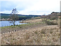 NY6391 : Old railway embankment by the Bakethin Reservoir by Oliver Dixon