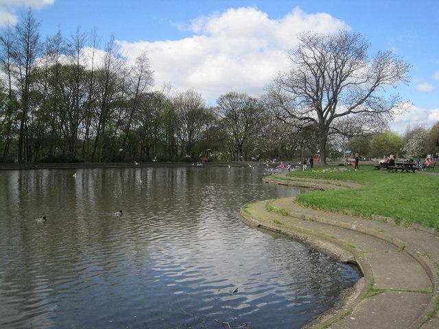 Pond, Paddy Freemans' Park