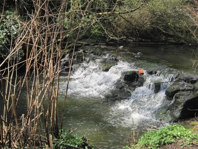 Weir on the Ouse Burn