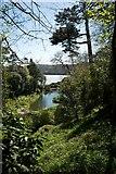 SW7627 : Trebah Gardens by Peter Skynner