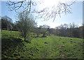 SD8633 : Footpath towards Hag Wood by John Slater
