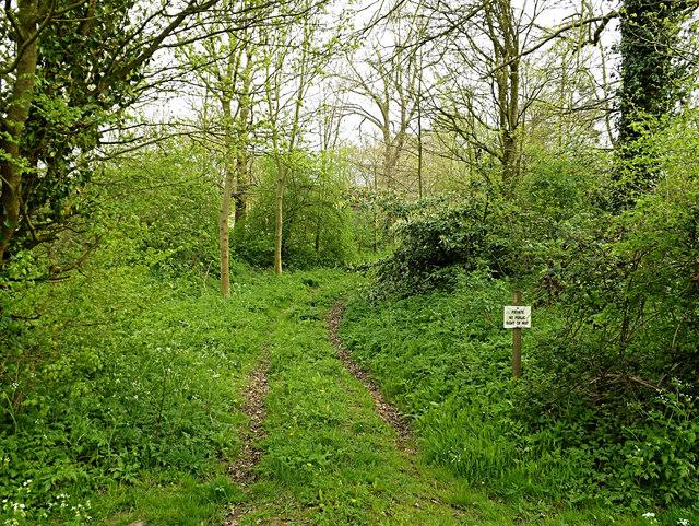Private track into Sibton Abbey
