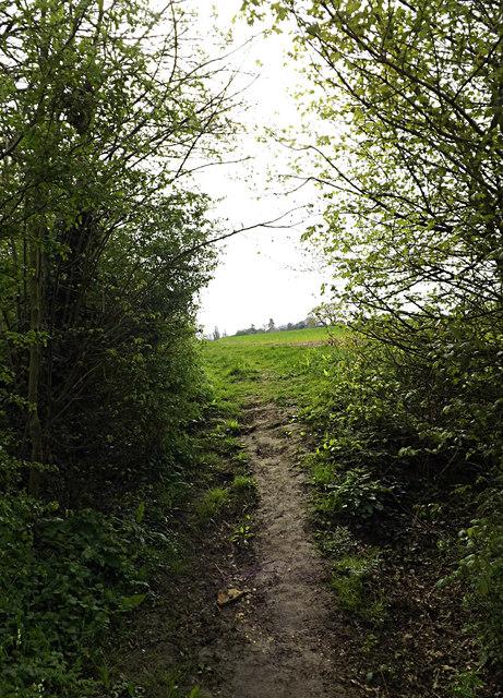 Loves Lane footpath