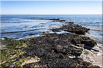 NO4202 : Rock outcrop at Lower Largo Beach by William Starkey