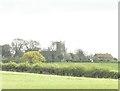 TG1335 : Plumstead church across the fields by Adrian S Pye