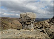 SK1087 : Eroded gritstone pedestal by Neil Theasby