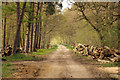 TF2560 : Short Ride by Richard Croft