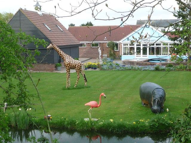 Essex fauna