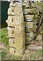 NZ7407 : Detail of gatepost at Lawns Farm by Christopher Hall