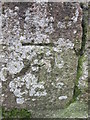 SX6987 : Ordnance Survey Cut Mark by Adrian Dust