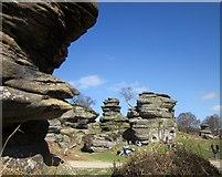 SE2064 : Brimham Rocks by Derek Harper