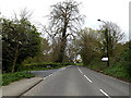 TM4189 : B1062 Bungay Road, Beccles by Adrian Cable
