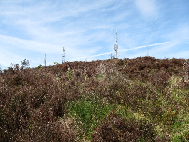 Camlough Telecommunications Masts from the forest road