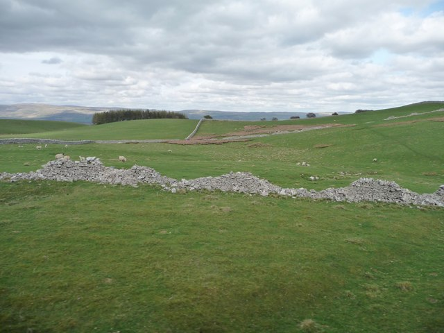Broken down drystone wall, west of Wiseber Hill