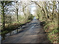 NY0214 : The lane to Cleator Moor by David Purchase