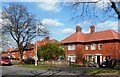 SJ9241 : Houses on Sandon Road, Meir by Anthony Parkes