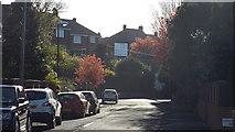 NZ3955 : Loughborough Avenue, Sunderland by Malc McDonald