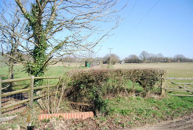 Farmland by Mundy Bois Rd by N Chadwick