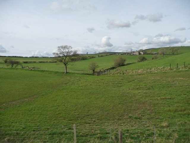 Field boundaries at How Brigs Laithe