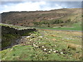 NY1801 : The path from Eel Tarn to Boot by David Purchase