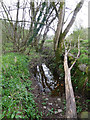 NS3408 : The Remains of a Mill Lade? by Mary and Angus Hogg