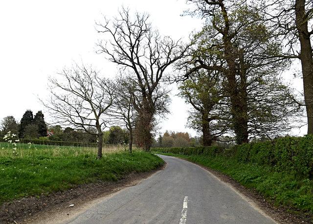 Rectory Road, Shotterley