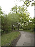 TQ2688 : Path on Lyttleton Playing Fields by David Howard